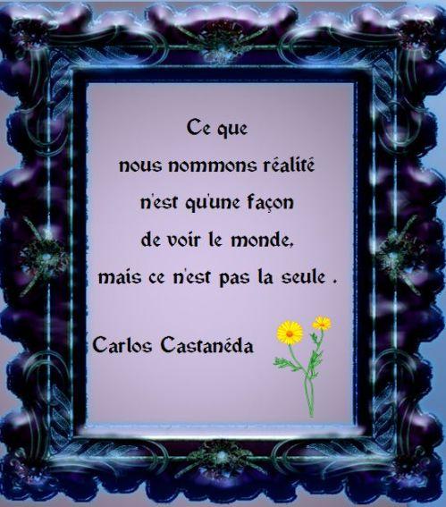 Carlos Castanéda55