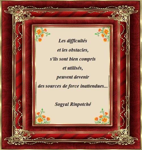 Sogyal Rinpotché45758