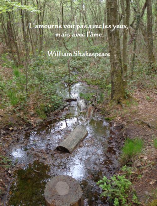 William Shakespeare12