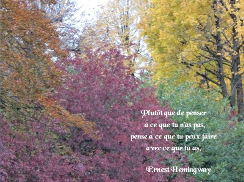 Ernest Hemingway455